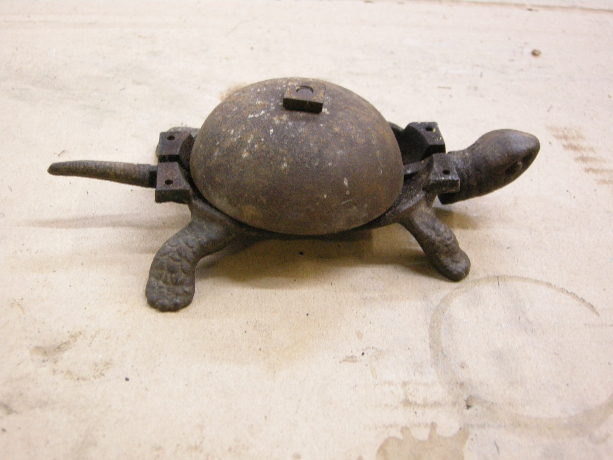 Tortoise table bell without shell